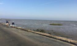 bord de mer à beauvoir sur mer